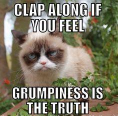 #humor, #grumpy cat, #grumpy cat meme, #cats,