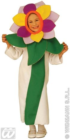Buy Fancy dress costumes from our huge range. Halloween, Christmas and more all with our price match guarantee.