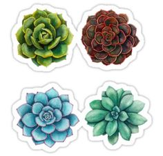 """Succulent Sticker Set"" Stickers by Drew Smith Journal Stickers, Laptop Stickers, Planner Stickers, Printable Stickers, Cute Stickers, Succulents Tumblr, Succulents Drawing, Paper Succulents, Watercolor Succulents"