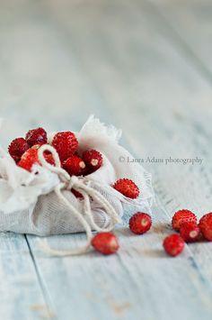 wild strawberries | Flickr – Condivisione di foto! Laura Adani photography - www.lauraadani.com