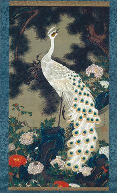 Old Pine Tree and Peacock, c. 1759–1761J. Rōshō kujaku