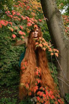 Girls with very long hair: Long hair photos Elizaveta Orlova. Long Red Hair, Super Long Hair, Big Hair, Beautiful Redhead, Beautiful Long Hair, Gorgeous Hair, Rapunzel Hair, Joe Cocker, Ginger Hair