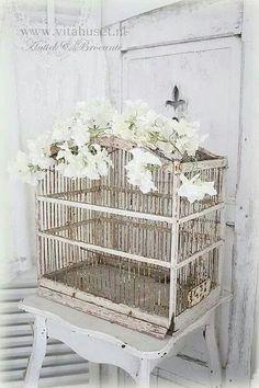 Endless display possibilities... BIRDCAGE