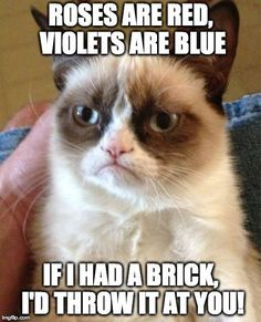 Roses are red, violets are blue. If I had a brick, I'd throw it at you!  lol grumpy cat...