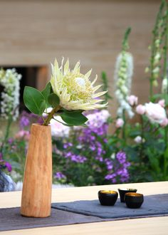 Chelsea Flower Show 2016 Retrospective: The LG Smart Garden – The Frustrated Gardener Chelsea Garden, Smart Garden, Chelsea Flower Show, Vines, Candles, Table Decorations, Flowers, Cottage, Florals