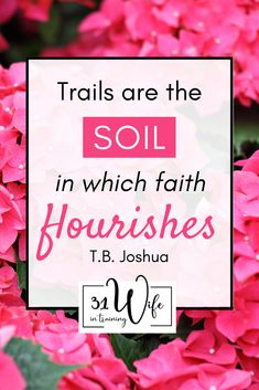 It is possible to thrive & not just survive in any season or circumstance in life. There are 3 things I want us to remember as we walk through every season of life, pop over to the 31Wife in Training blog for more. | How to thrive as Christians | How to flourish as Christian women | Christian articles for women | #bible #jesuslovesyou #faithwalk Christian Women, Christian Life, Christian Quotes, Sermon Notes, Bible Study Tips, Inspirational Articles, History For Kids, Christian Devotions, Seasons Of Life