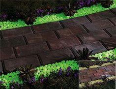 #Diseño #Jardines #Paisajismo #Plantas #Rocas #Potes #Pintura #Luminiscentes…