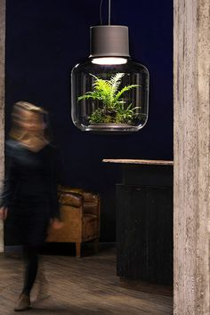 Mygdal plant lamp lets you grow plants in poorly lit apartments