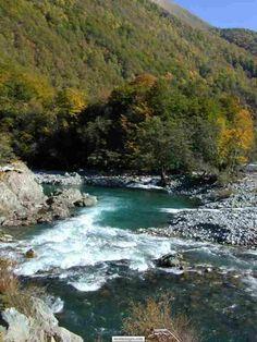 Montenegro_Biograd_national_Park