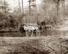 Virginia. Mule team crossing a brook - Virginia. Mule team crossing a brook. It was taken in 1862.  The image shows United States at Civil War.