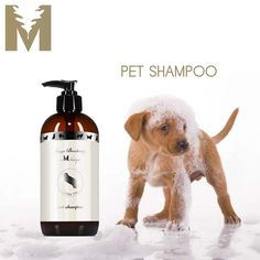 PET SHAMPOO $26 Grooming is bonding. And using Jorge at M Boutique's luxury pet shampoo will deliver unparalleled results. Formulated by pet owners, years of delicate insight and observation have culminated in a hand-picked ingredients list from around the world sure to caress your pet's body and mind. Neroli, the most luxurious of citrus oils, beautifully alleviates anxiety and hyperactivity as amazing properties of aloe, rosemary, and avocado richly soothe sensitive skin.
