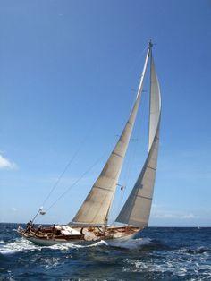 Sailing in a Classic Yacht Regatta