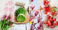 https://flic.kr/p/DND6MD | New spring our website cover .. | Новая, весенняя, главная страничка нашего сайта. Весеннего настроения, мои друзья ! New spring our website cover .... Merry spring moods for all your friends !!  www.creativephototeam.com/  #creativephototeam #spring