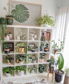 24 Plant Stand Design Ideas for Indoor Houseplants Best Dream Home design dream home houseplants ideas indoor plant stand plant stands Chic Living, Trendy Home Decor, House Plants Indoor, Home Decor Trends, Plant Decor Indoor, Diy Plant Stand, Plant Decor, Trending Decor, Room With Plants