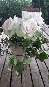 Tisch-Deko Kunstblumen Rosen Topf Efeu Hochzeit Deco, Bloom, Spring Summer, Summer Dresses, World, Floral, Flowers, Plants, Inspiration