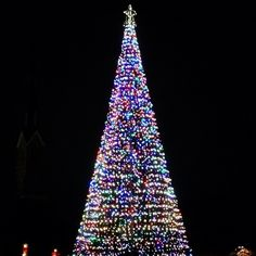 It's beginning to look a lot like #ChristmasinCharleston! Marion square is shining bright.