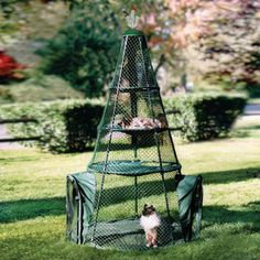The Cat Teepee - Hammacher Schlemmer WE NEED this so cats can go outside with us instead of meowing from the window! Crazy Cat Lady, Crazy Cats, Hammacher Schlemmer, Cat Teepee, Outdoor Cat Enclosure, Outdoor Cats, Cat Furniture, Bedroom Furniture, Furniture Design