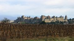 Picture - Carcassonne Cité, prime example of medieval fortification in Europe . | PlanetWare