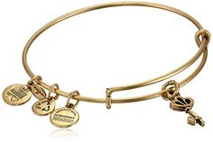 Amazon.com: Alex and Ani Womens Key To My Heart Charm Bangle Rafaelian Gold Finish One Size: Jewelry