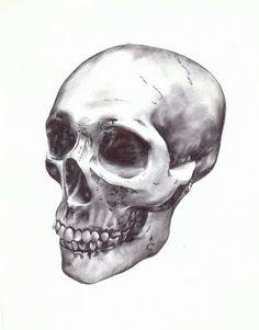 Drawing made with black ballpoint pens by Paul Alexander Thornton.    http://www.facebook.com/PaulAlexThornton