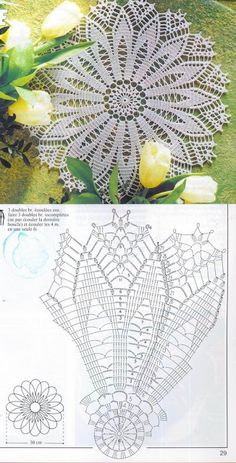 Knitting and Crochet Learning - Modelli di centrini all&Learn to knit and Crochet with Jeanette: Patterns of crochet doilies.This Pin was discovered by Mar Filet Crochet, Crochet Doily Diagram, Crochet Doily Patterns, Crochet Round, Crochet Chart, Crochet Home, Thread Crochet, Crochet Motif, Crochet Designs
