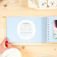 Álbum - 9 meses y mil aventuras  -  Mr. Wonderful