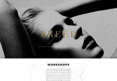 un blog dedicado a fashion photography, los trabajos mas destacados, modelos, tendencias