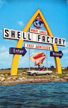 shell city ft myers fl