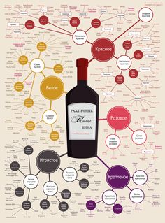 Руководство по выбору вина к праздничному столу. Различные типы вина по стилю и вкусу  в одной инфографике. #инфографика