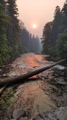 Most beautiful wrong turn. Yosemite National Park [2268 x 4032] Bracerey http://ift.tt/2fxSDOJ September 29 2017 at 03:28PMon reddit.com/r/ EarthPorn