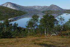 Cabin for rent in Namsskogan, Norway. www.inatur.no/hytte/50f2fcbde4b0adea30743b57/storgasvassbua-nr-3-i-namsskogan-fjellstyre | Inatur.no