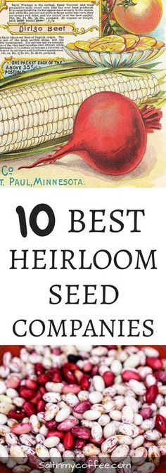 10 great heirloom seed companies, that offer organic, heirloom, and non-gmo seeds.