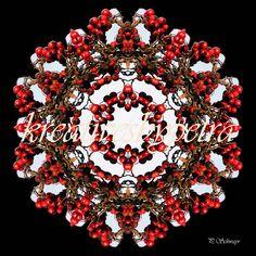 Mandala ''Beeren''  kreativesbypetra  #mandala #mandalas #mandalaart #mandalastyle #inspiration #innereruhe #spirit #beeren #beery Mandala Art, Petra, Christmas Wreaths, Holiday Decor, Inspiration, Style, Mandalas, Mosaics, Canvas