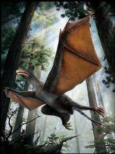 dinosaurs dragon - Google 搜尋