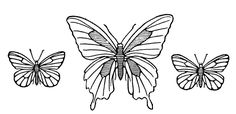 Butterflies -- free printable from Cathe Holden at Just Something I Made