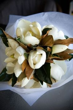 Magnolia bouquet...add cotton and this would be SO perfect