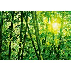 Brewster Home Fashions Ideal Decor Bamboo Forest Wall Mural