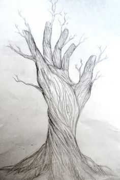 Image result for nature drawings