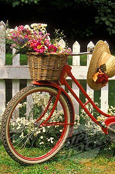 Red bicycle w/ flowers in basket & straw hat!