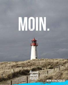 MOIN. | Mee(h)r vom Meer >>