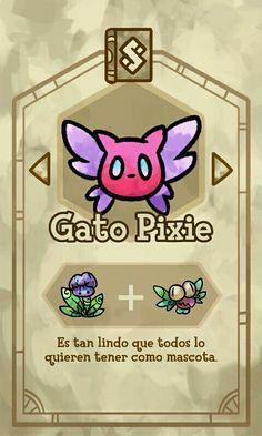 Primer libro: Gato pixie