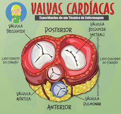 As Valvas cardíacasouVálvulas cardíacassão estruturas formadas basicamente portecido conjuntivoque se encontra à saída de cada uma das quatros câmaras do coração. Se interpõem entreátriosev…