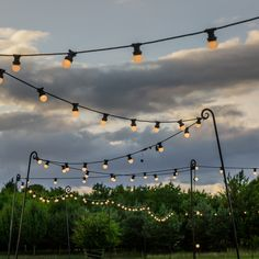 Festoon lights are a lovely way to light the pathway to and from the reception location. Big Garden, Summer Garden, Festoon Lights, Unique Wedding Venues, The Way Home, North Yorkshire, Matilda, Pathways, Newlyweds