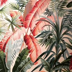 This is listed as being from a Pierre Frey exhibition at the Musée D'art Décoratif in Paris. Looks like a very French wallpaper design from the early Would love to know more. Art Tropical, Motif Tropical, Tropical Pattern, Tropical Vibes, Tropical Leaves, Tropical Fabric, Tropical Interior, Tropical Prints, Tropical Design