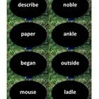 RF.2.3c Two-syllable long vowel word sort and matching game