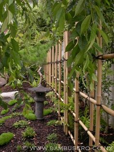 http://www.bambusero.co.nz/gallery/outdoor-bamboo-work/japanese-fencing/