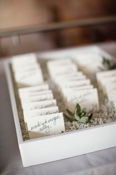 white trays and succulents used to display seating cards | Photography by ArchetypeStudioInc.com |  Floral Design by floralevents.com |  Read more - http://www.stylemepretty.com/2013/07/11/houston-wedding-from-archetype-studio-inc/
