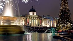 A gathering of Carol Singers in front of the Christmas Tree in Trafalgar Square. Photo by David Iliff, via wikicommons
