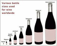 wine-bottles-sizes wow wow wow!
