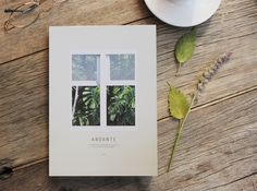 Andante Diary by Seeso Graphics
